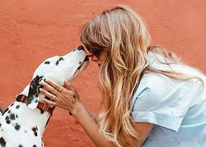 comparateur d'assurance mutuelle pour animaux